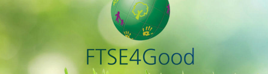 One more year on the FTSE4Good Sustainability Index