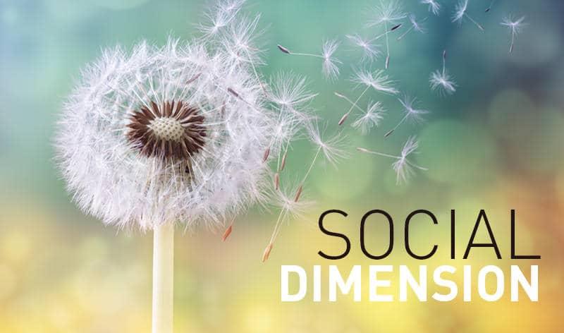 2018 social dimension