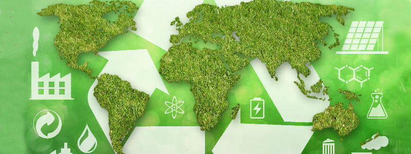 MAPFRE recognized as world leader for corporate environmental action