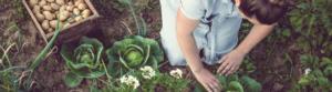 ClosinGap brecha mujeres en el entorno rural
