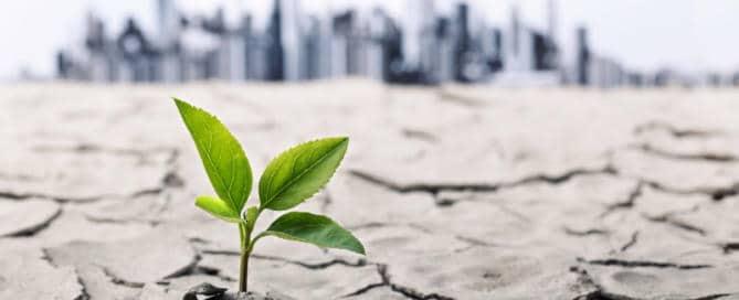 ¿Se puede combatir el cambio climático? Estas son las opciones